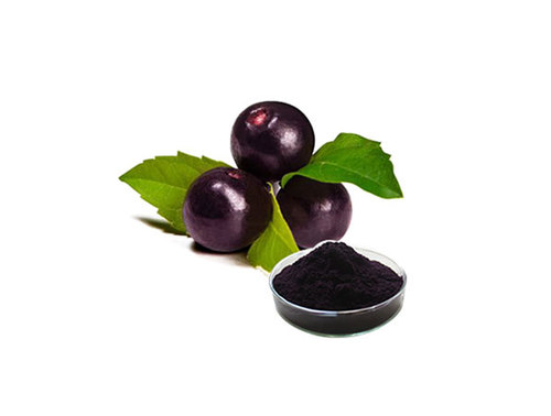 Maquiberry Powder