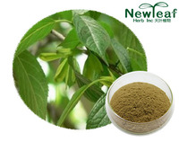 Eucommia  Extract(Chlorogenic acid)