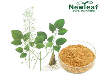 Epimedium Extract(Icariin)