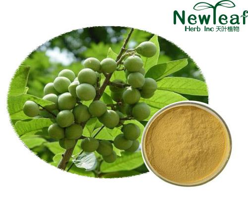 Sapindus saponins,Soapberry Seed extract